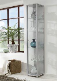 Vitrine Glasvitrine silber/alufarben